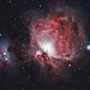 Orion Nebula (M42),                                bobine