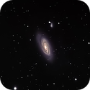 M90 - Angled Spiral Galaxy,                                David N Kidd