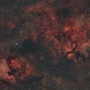 Cygnus - widefield HaRGB-Testing new equipment,                                Paul Schuberth