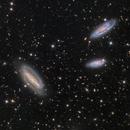 The Grus Quartet (NGC 7582, 7590, 7599, -NGC7552),                                Miles Zhou