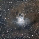 Iris nebula,                                Tom's Pics
