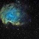 Monkey Head Nebula NGC2174,                                marsbymars