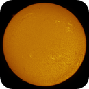 Solar Disk in 0.5Å Hα (24 July, 2021),                                Brent Newton