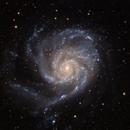 M 101: The Pinwheel Galaxy,                                Alex Roberts