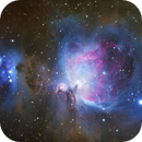 M42 - The Great Orion Nebula,                                Florian Winterl