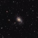 NGC 772,                                Tim