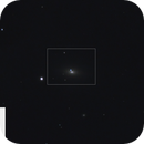 Supernova 2016coj in NGC 4125,                                PhotonCollector