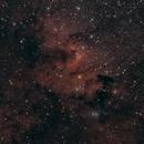Spacecat stroll through Kepheus Region,                                Stephan Linhart