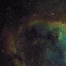 Heart and Fish Head Nebula,                                Pawel Zgrzebnicki