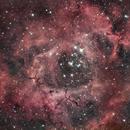 Rosette nebula,                                Lovag Tamás