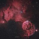 Jelly fish nebula,                                Shadi Nassri