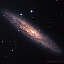 NGC253 Galaxy,                                Joe Perulero