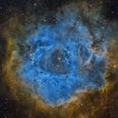 NGC 2237 - Rosette Nebula,                                Paolo De Salvatore