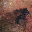 Barnard 312,                                Nikita Misiura