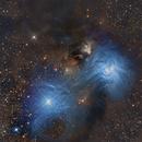NGC 6726-7/IC 4812 & Others in Corona Australis,                                Paddy Gilliland