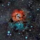 M20 Trifid Nebula,                                Mincho Kardzhilov