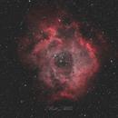 Rosette Nebula in HOO bi-color,                                Matt