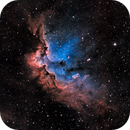 Sh2-142 The Wizard Nebula in Modified SHO,                                Greg Nelson