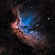 Sh2-142 The Wizard Nebula in Modified SHO,                                Greg Nelson