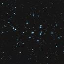 M44 - Beehive Open Cluster (with Flattener!),                                Mark Germani