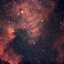 NGC7000 - North America Nebula,                                agostinognasso