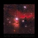 IC 434,                                Tajeiro