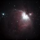 Orion nebula,                                Steve Bouvier