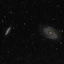 M81 Bodes Nebula + M82,                                autonm