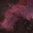 NGC 7000 in Cygnus,                                Nurinniska
