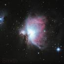 Orion Nebula,                                Sean Smith