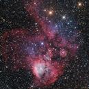 NGC 2467 - Skull and Cross Bones Nebula - Wide Field,                                Terry Robison