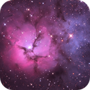 Trifid Nebula,                                André Peixoto
