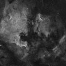 North America Nebula in hydrogen,                                Piotr Dzikowski