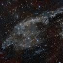 Mandel-Wilson 5: The Fish Hook Nebula,                                Göran Nilsson