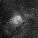 NGC6823 H-alpha,                                Eric Coles (coles44)