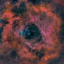 NGC2237_HaHaRGB,                                Paul Storey
