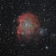Monkey Head Nebula (NGC 2174),                                Hartmuth Kintzel