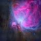 M42 Orion Nebula,                                Tolga
