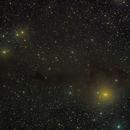LDN1251 dark nebula in Cepheus,                                Brandon Liew