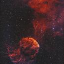 IC443 Jelly Fish Nebula HOO BiColor Processing !,                                Young Joon Byun