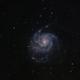 M101 Pinwheel Galaxy,                                Brett Creider