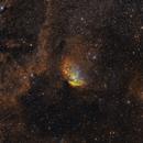 The Tulip Nebula,                                Casey Good