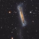 NGC 3628 tidal's tail,                                Aleix Roig