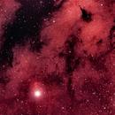 Sadr IC 1318,                                Tam Rich