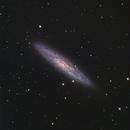 NGC253,                                Atsushi Ono