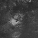 NGC 7000 (North America Nebula),                                jeanluc