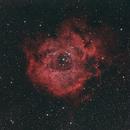 NGC 2237 The Rosette Nebula,                                Mark L Mitchell