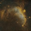 Seagull Nebula Wide Field In HOO,                                mikefulb
