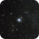 NGC3344,                                Rabbit Zhang