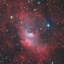 NGC 7635 Bubble Nebula,                                Jens Zippel